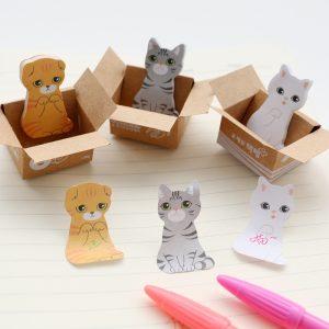 Gato Kawaii en Caja